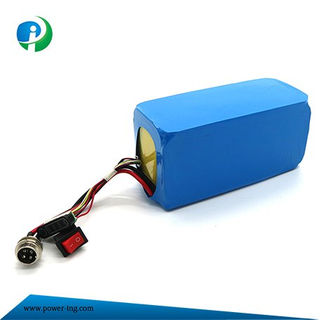 China Rechargeable 12V-36V Garden Tools Li-ion Battery Lithium Battery with 18650
